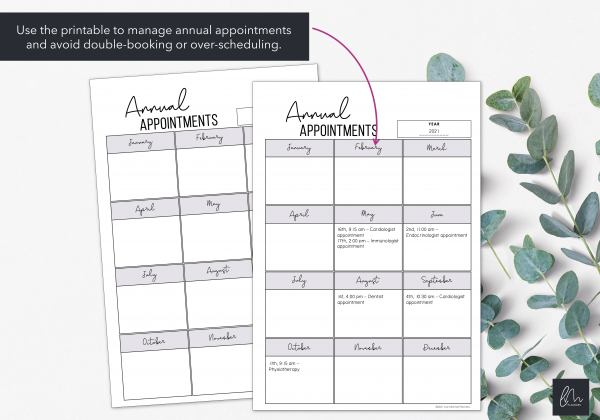 LiveMinimalPlanners Annual Appointment Overview