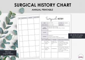 LiveMinimalPlanners Surgical History