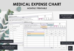 LiveMinimalPlanners Minimalist Medical Expenses-1